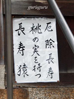 14hiyosi09.jpg