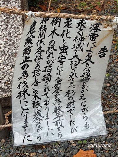 14hiyosi13.jpg