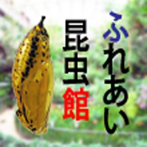2019_ふれあい昆虫館_logo