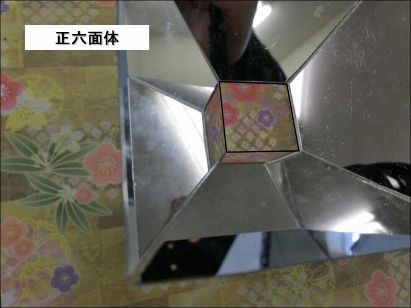 2019船橋高校自然科学部_ (3)