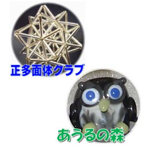 2019_正多面体クラブ & あうるの森_logo