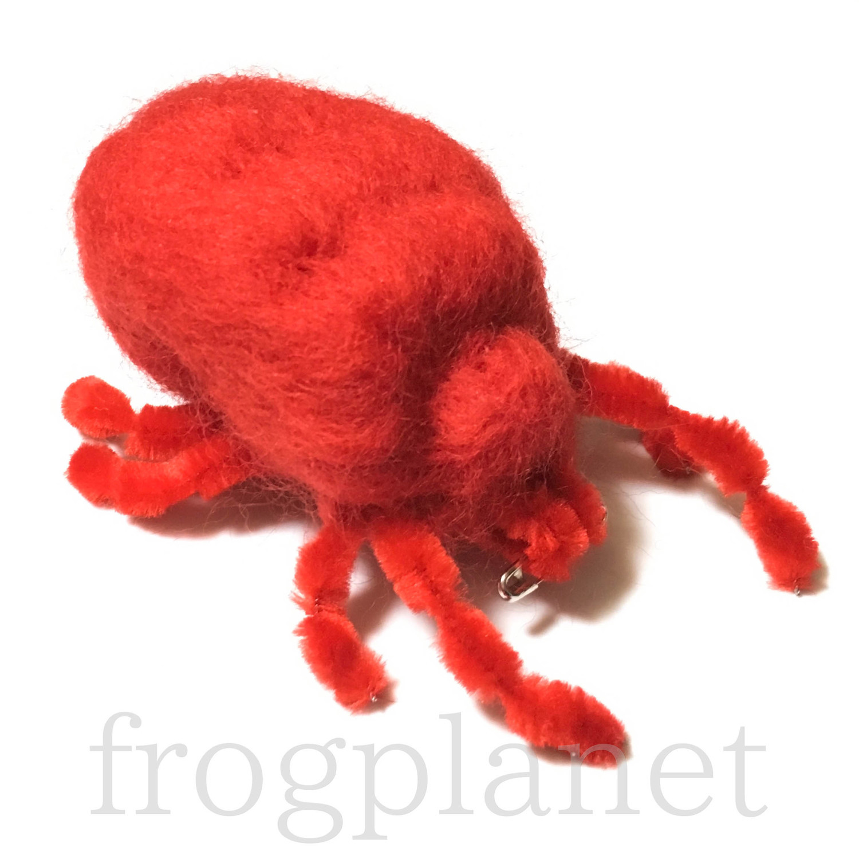 2019_frogplanet klugi♪_4