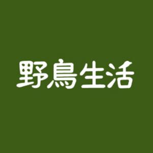 2019_野鳥生活_logo