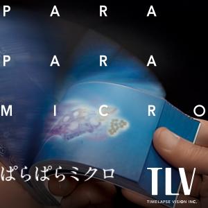 2019_ぱらぱらミクロ_logo