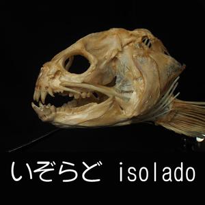 2019_いぞらど isolado_logo