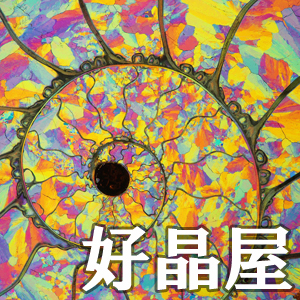 2019_好晶屋_logo