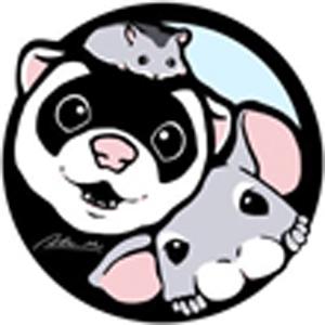 2019_森田存_logo