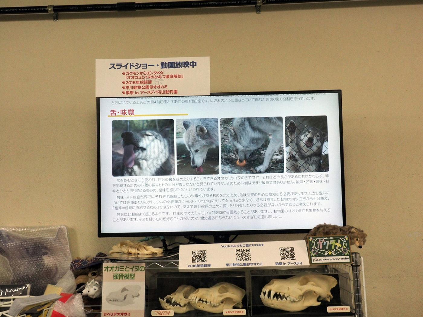 2019_狼祭in博物ふぇすてぃばる!_3