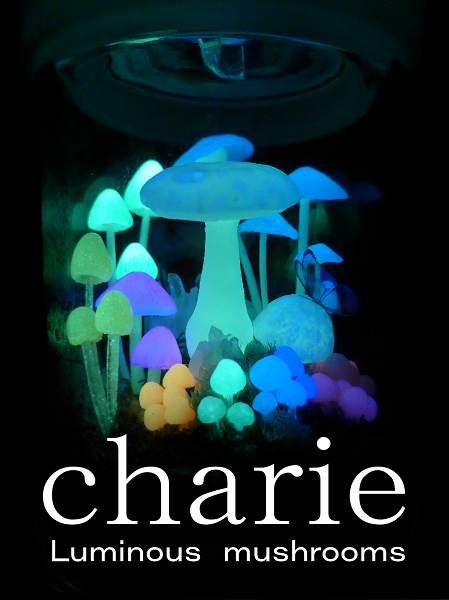 2019_charie_ (1)