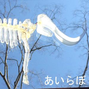 2019_あいらぼ_logo