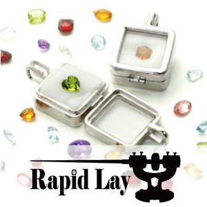 2019_Rapid Lay_logo