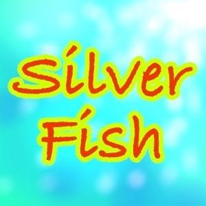 2019_Silver Fish_logo