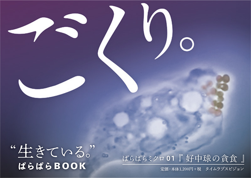 2019_ガクタメ_ぱらぱらミクロ_ (1)