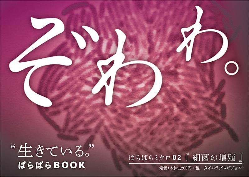 2019_ガクタメ_ぱらぱらミクロ_ (2)