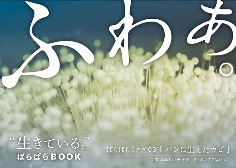 2019_ガクタメ_ぱらぱらミクロ_ (3)