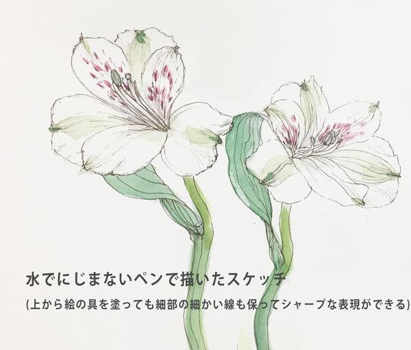 2019_ガクタメ_うさぎとりすと_ (2)