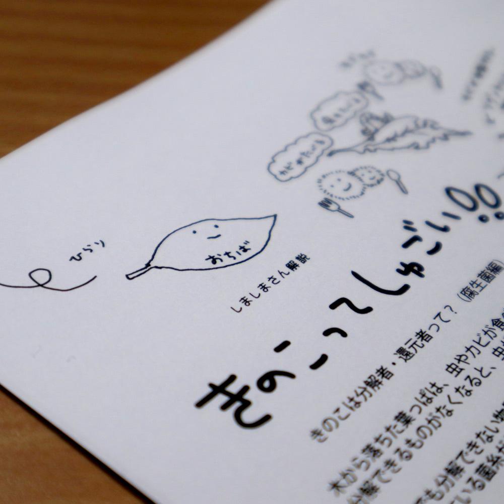 2019_ガクタメ_Shima_shima