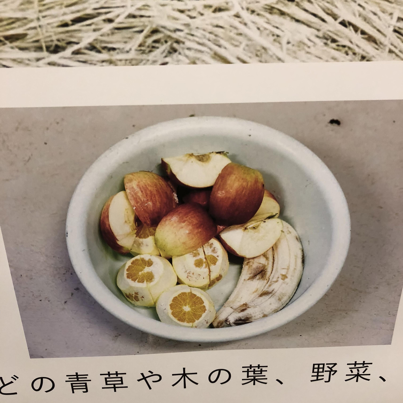2019_ガクタメ_わくわくバク準備室fromURBAN SAFARI_ (3)