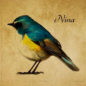 2019_Nina_logo.jpg
