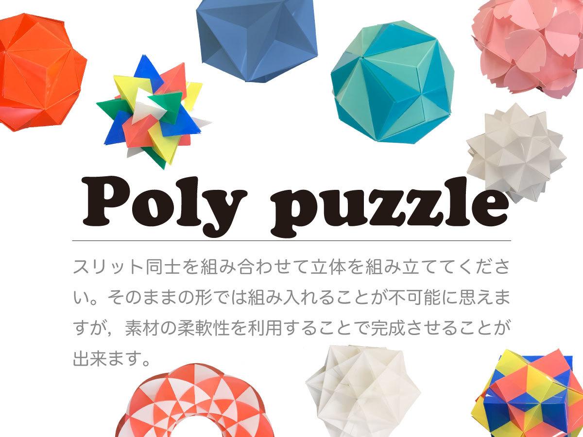 2019_Tamentai_jp_1.jpg