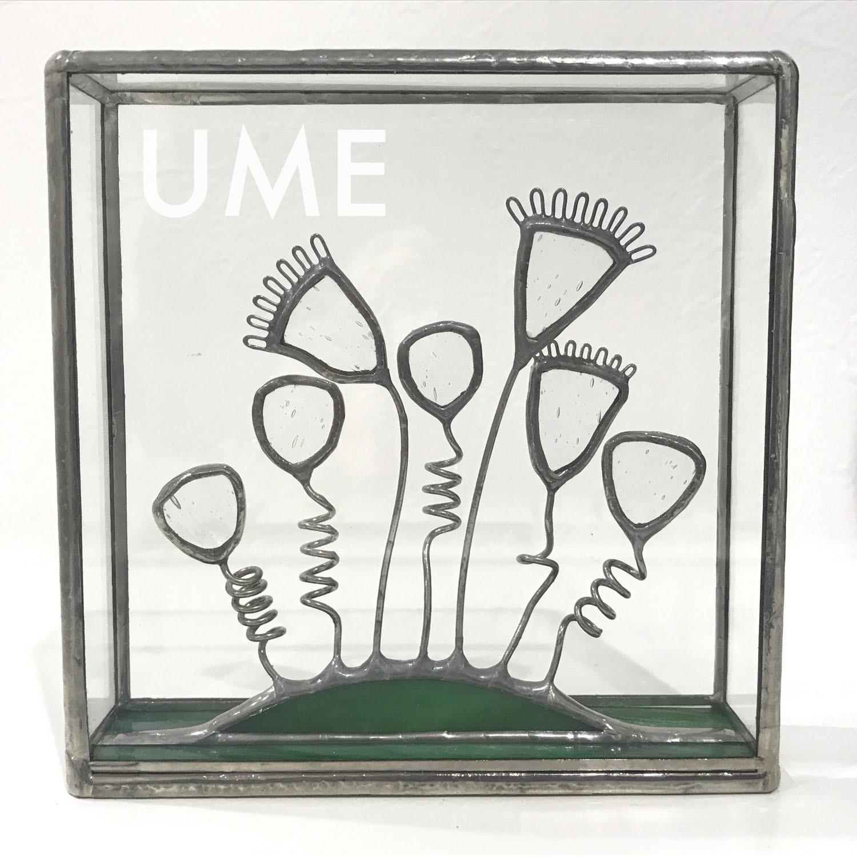 2019_UME_8.jpg
