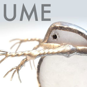 2019_UME_logo.jpg