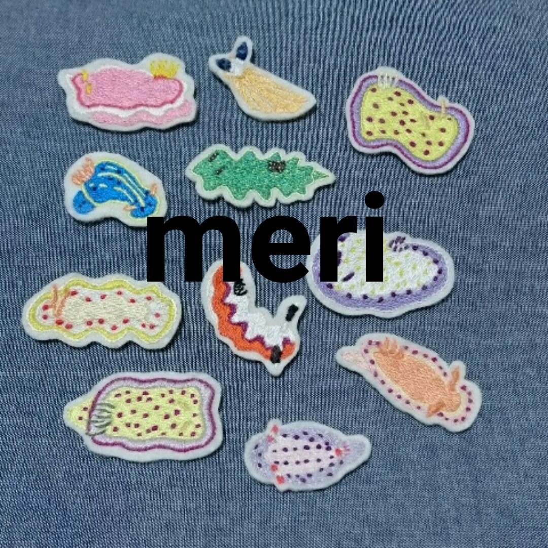 2019_meri_logo.jpg