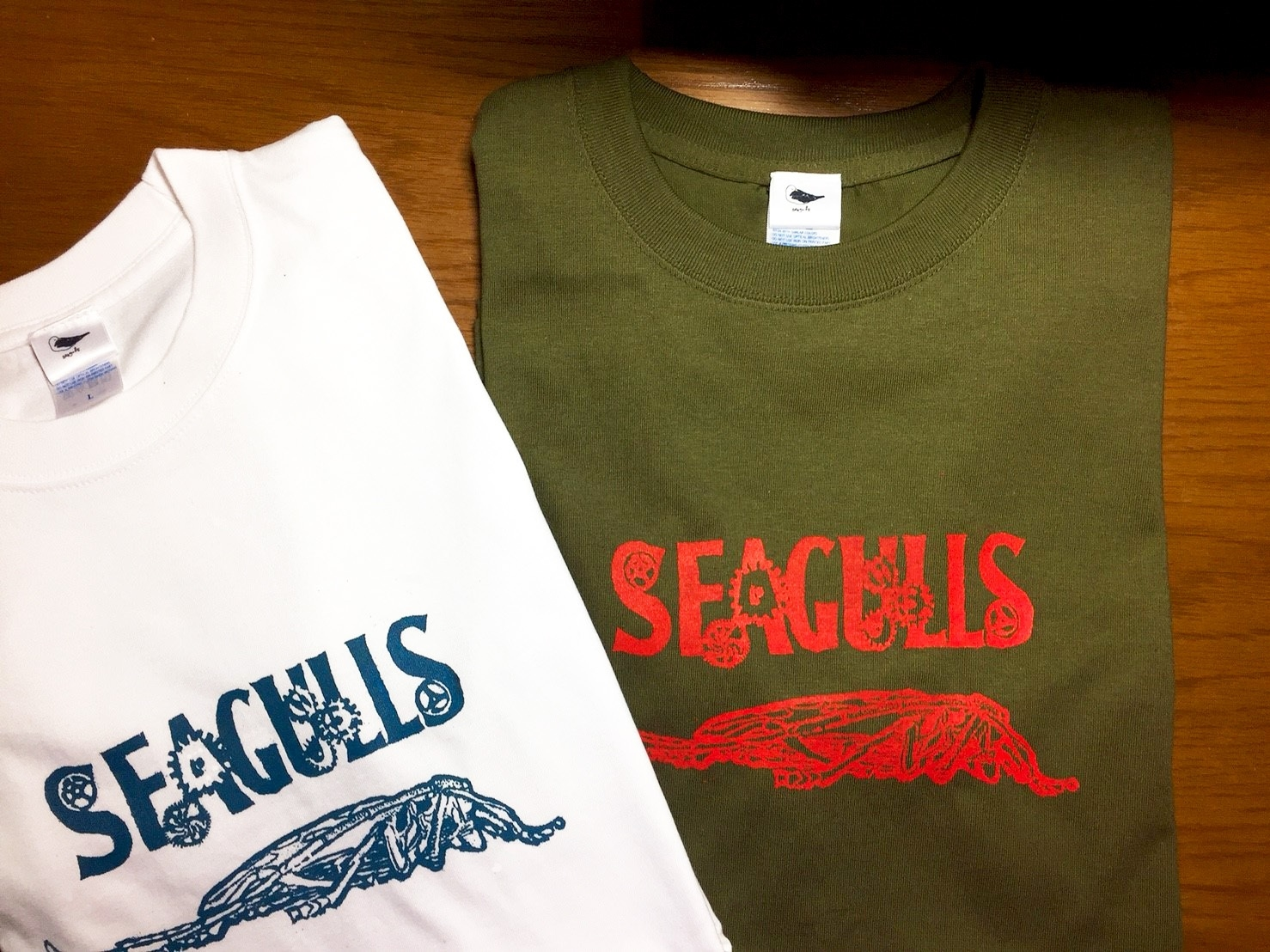 2019_seagulls_5.jpg