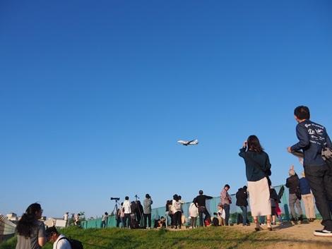 飛行機見物