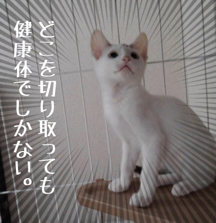 KIMG0164.jpg