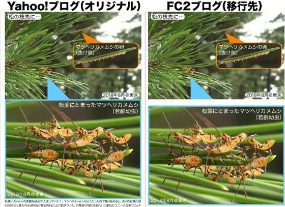 01FC2ブログ移行画像分断