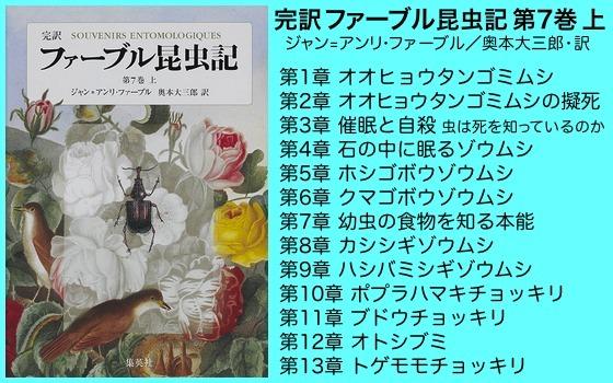 01ファーブル昆虫記7巻上