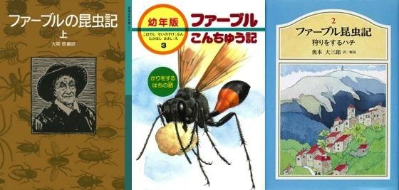 01昆虫記3冊