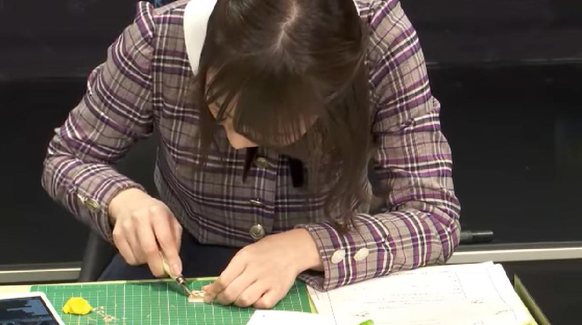乃木坂46「猫舌SHOWROOM」 北野日奈子&渡辺みり愛