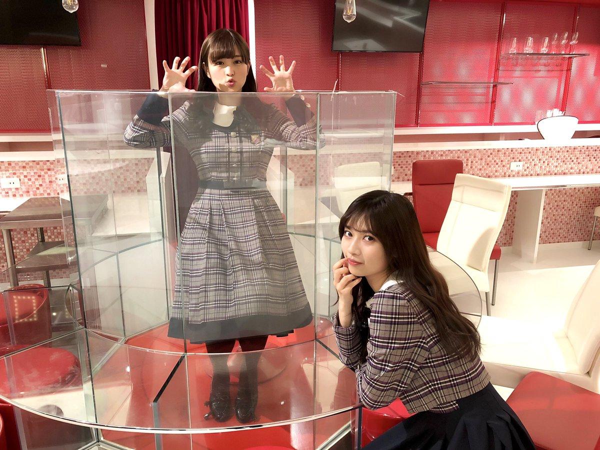 乃木坂46「猫舌SHOWROOM」伊藤かりん&寺田蘭世
