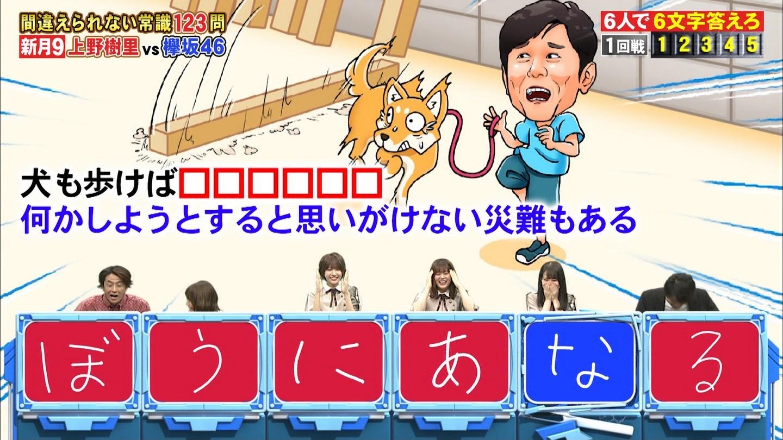ネプリーグ 欅坂46松田里奈「犬も歩けば、ぼうにあなる」