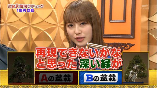 芸能人格付けチェック2019 欅坂46 盆栽2