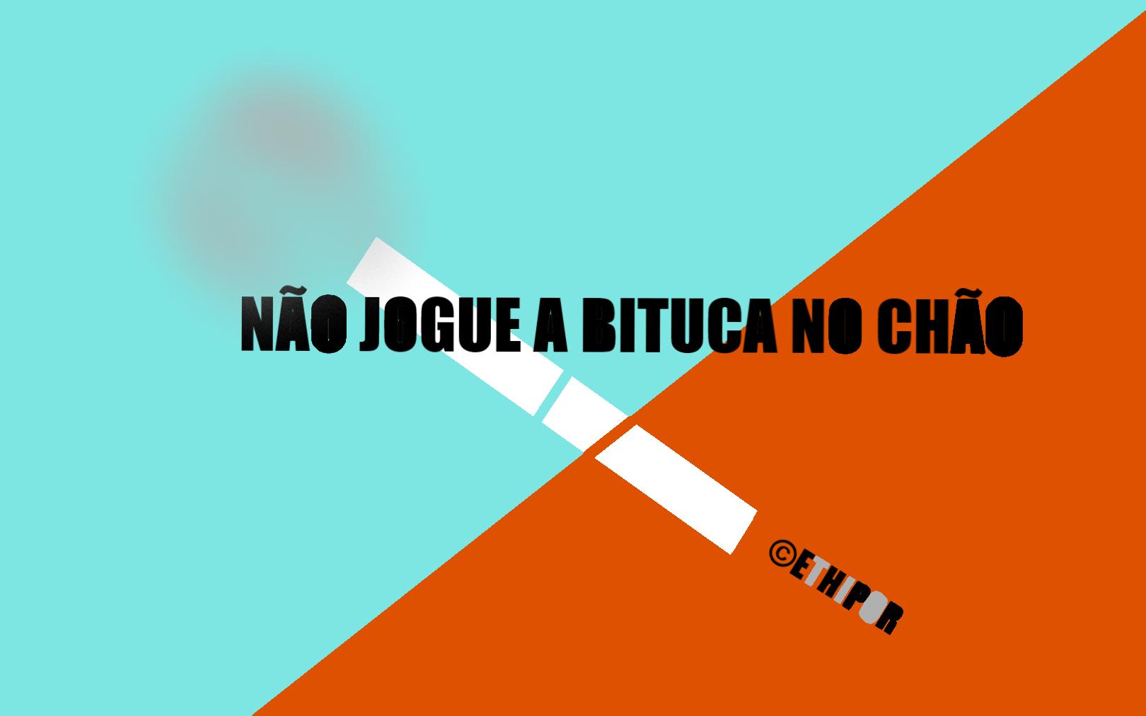 BITUCA!!.png