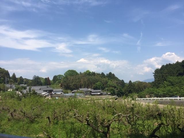 風景IMG_7919