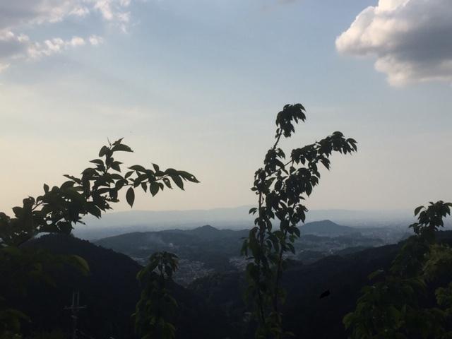 大和三山景色
