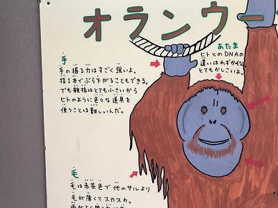 北海道_190810_0070