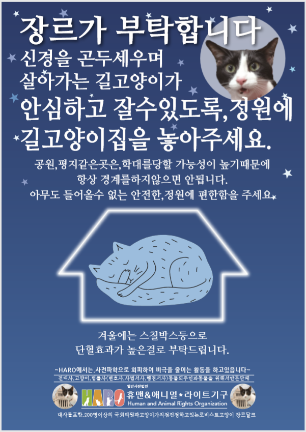 韓国語 猫ハウスを庭に置いて