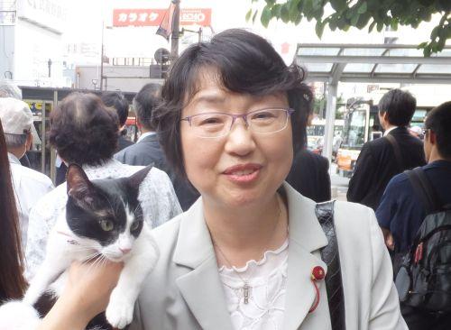 さいたま市議会議員 稲川智美先生  500