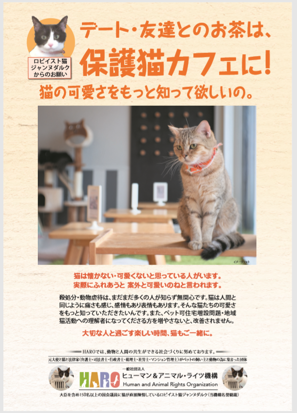 猫カフェ 宣教師活動