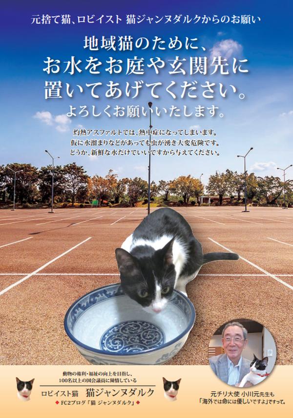 PNG お水を置いて青 小川大使 600