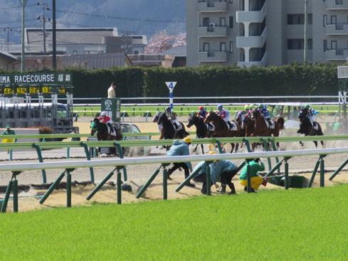 福島0406レース01