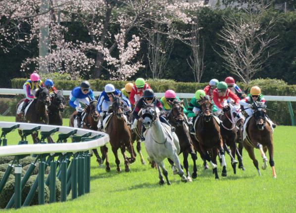 福島0406レース089のコピー