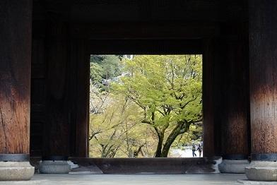 1南禅寺190412