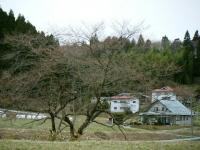 2019-04-10重箱石04