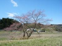 2019-04-16重箱石04